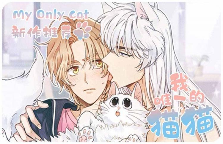 韩漫漫画《我唯一的猫猫》(在线阅读免费)  &(百度云全本全集)