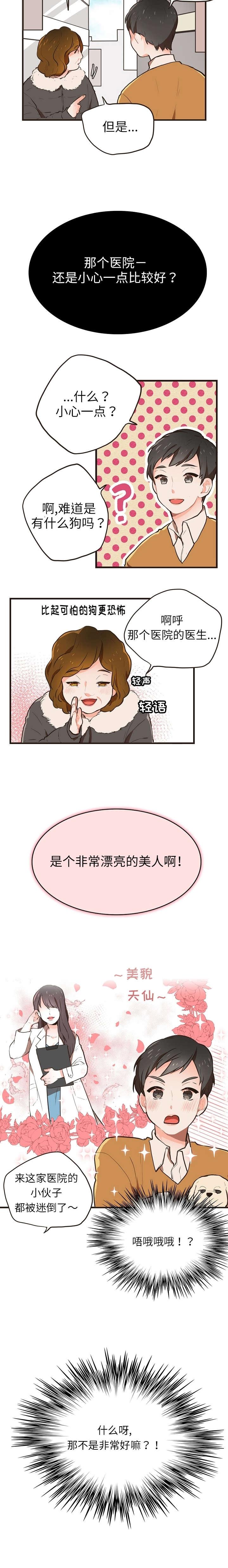 汪汪喵喵-漫画下拉式在线阅读_最新连载更新至25话-啵乐漫画